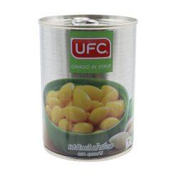 UFC Ginkgo in Syrup 565 g